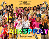 Hairspray Show posters